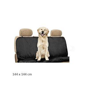 automobilio sedynes uztiesalas sunims